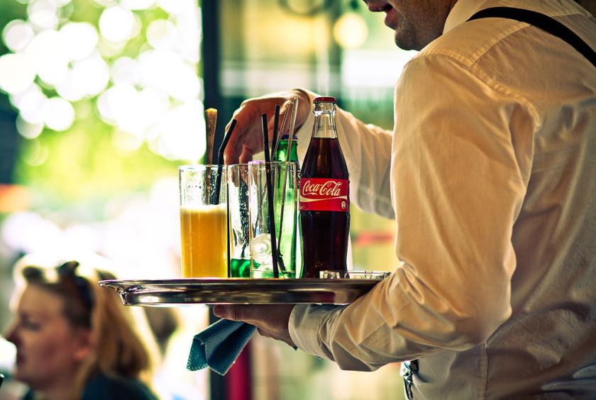 nz visa study guide waiter