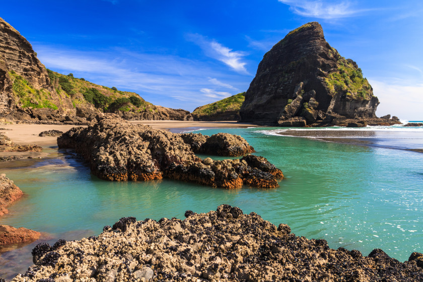 Best Places to Study Abroad beaches: auckland
