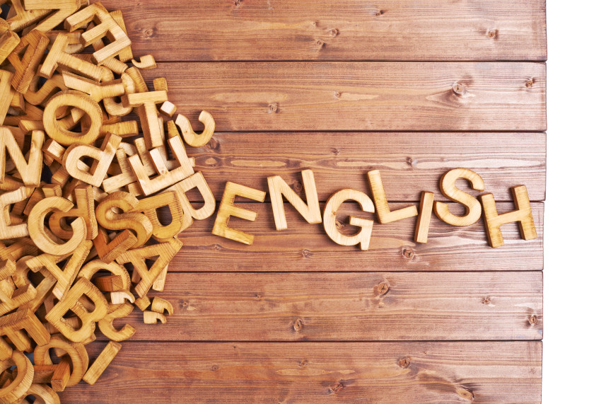 Easy Guide to English Essay_language English