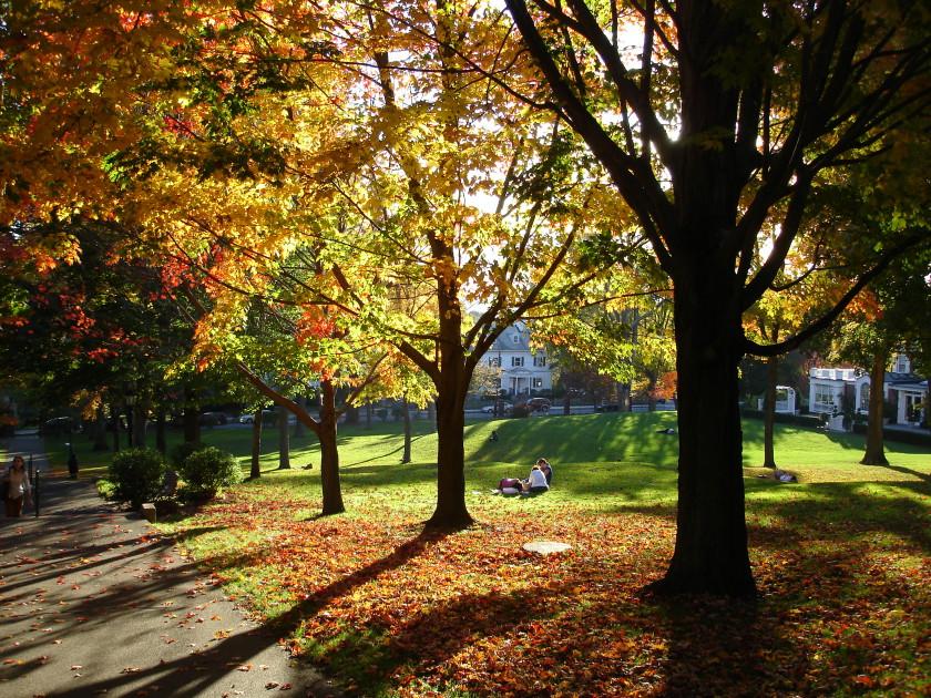 Boston - tufts university