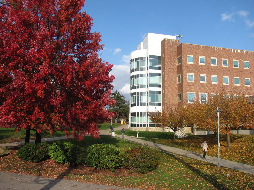 boston universities: brandeis university