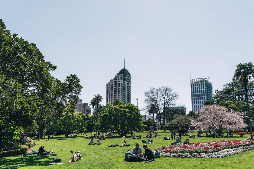 Most In-Demand Degrees For Landing A Graduate Job_NZ