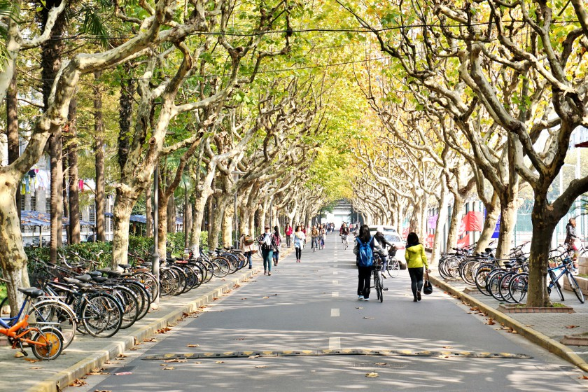Donalfd Trump_Fudan University, Shanghai